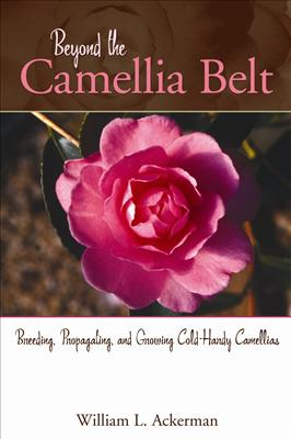 Beyond The Camellia Belt 2
